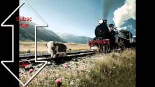 Jurnal FM X Te iubeste Tolea viseaza trenul tuc tuc